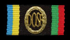 Bundeswehr DSA (Deutsches Sportabzeichen) Anzug